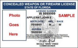 Florida conceal and carry